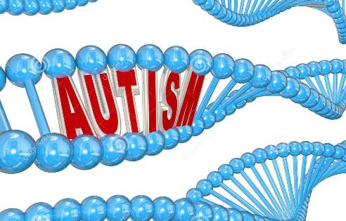 New Research On Autism Genes